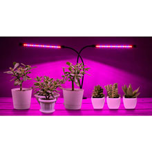 Dual Head Grow Lights