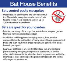 Premium Bat House