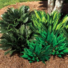 All-Weather Forever Plant - Fern