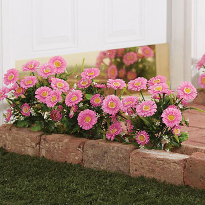 All-Weather Forever Blooms - Pink Daisy