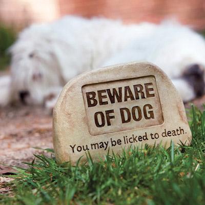 Beware Of Dog Key Hider