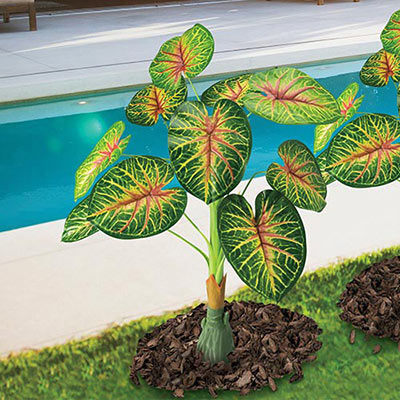 All-Weather Forever Tropical Plant
