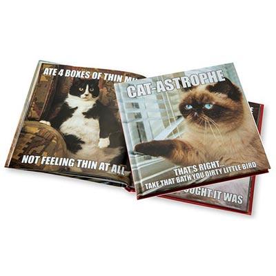 Cat-Astrophe Book