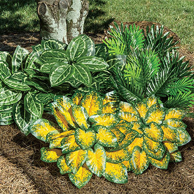 All-Weather Forever Shade Plants - Caladium - Set Of 2