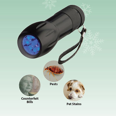 Blacklight Flashlight