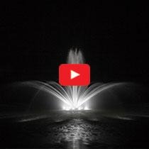 PondSeries™ 1/2 HP Fountain - Crown & Trumpet Spray Pattern