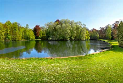 Pond & Lake 101