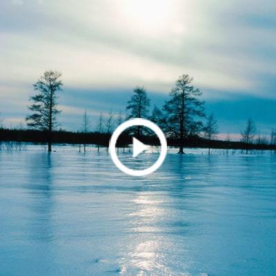 Winterizing Your Farm Pond