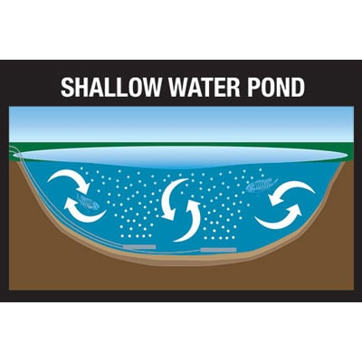 Shallow ponds do not allow the diffused air column to open as far which limits the aeration area.