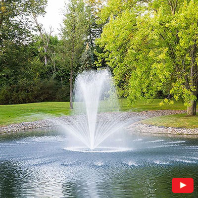 PondSeries 1-2 HP Fountain Crown and Trumpet