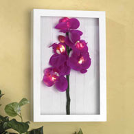 Framed LED Orchid Wall Art
