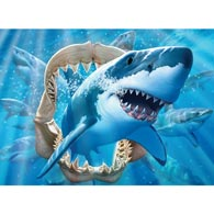 Great White Delight 100 Large Piece Jigsaw Puzzle