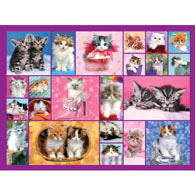 Kittens 500 Piece Jigsaw Puzzle