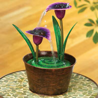Purple Calla Lily Fountain
