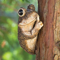 Keep Quiet Frog On A Tree Peeker