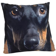 Dog Face Pillow- Dachshund