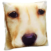 Dog Face Pillow- Yellow Lab