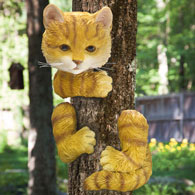 Kitty Up A Tree Hugger