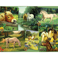 Horse Postcard 200 Large Piece Jigsaw Puzzle