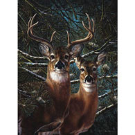 Among The Pines 1000 Piece Jigsaw Puzzle