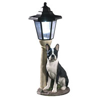 Solar Boston Terrier Lantern