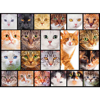 Cats 1000 Piece Collage Jigsaw Puzzle