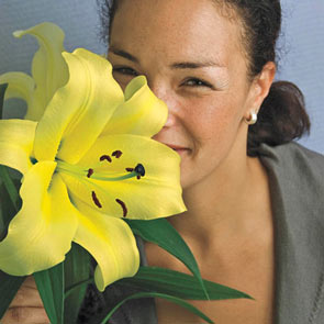 Conca D'Or Lily Tree®