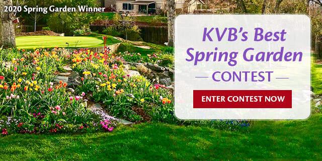 Spring Garden Contest