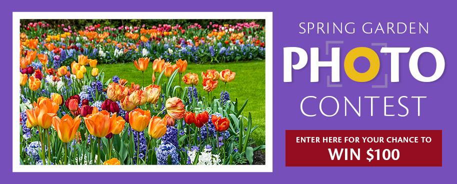 Spring Garden Photo Contest