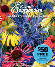K. Van Bourgondien & Sons, Inc