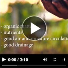 Dormant Plants video