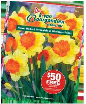 K. Van Bourgondien & Sons, Inc