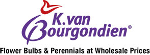 K. van Bourgondien - Flower Bulbs & Perennials at Wholesale Prices!