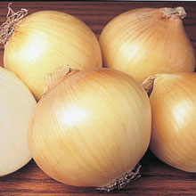 Yellow Sweet Spanish Onion