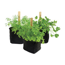 Grow Tub®Herb/Transplant Pots