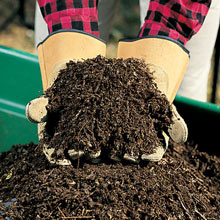 Compost Alive!® Activator with Quick-Start™ for Dry Plant Matter