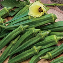 Emerald Green Velvet Okra
