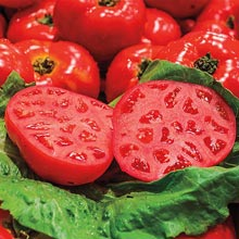 Gurney's® Ruby Monster Hybrid Tomato