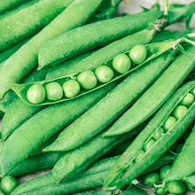 Northfield Pea