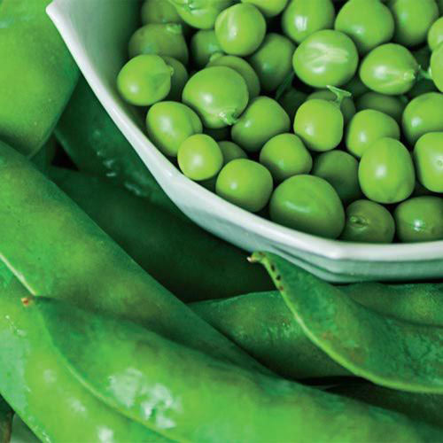 Now or Later Pea