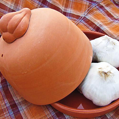 Terra Cotta Garlic Roaster