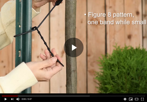 How to use Adjustable Plant Ties