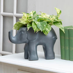 Good Fortune Elephant Planter