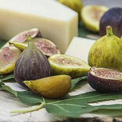 Super Sweet® Fig