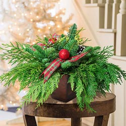 Winter's Joy Evergreen Centerpiece