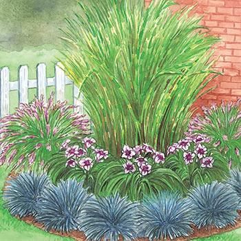 Corner Grass Garden