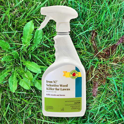 Iron X!™ Selective Weed Killer for Lawns