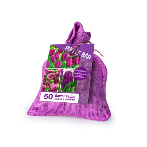 Purple Bulb Collection