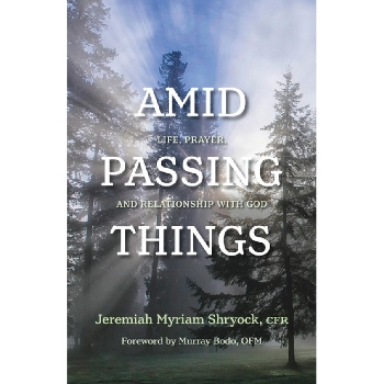 Amid Passing Things (paperback)