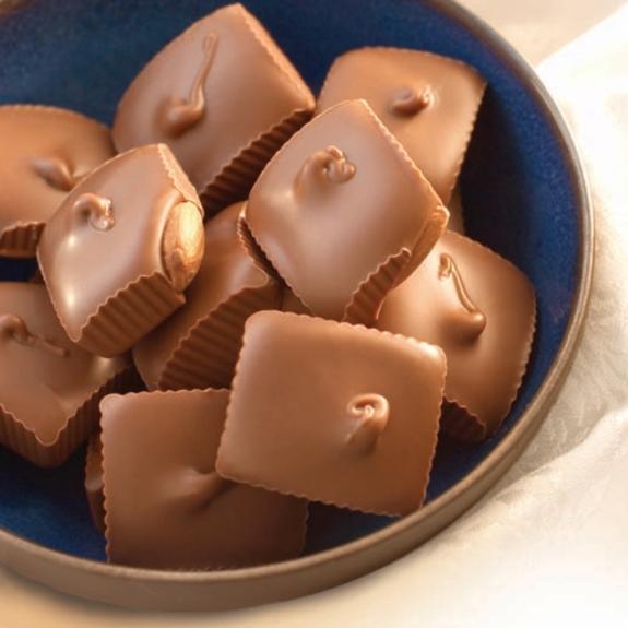 Milk Chocolate Almond Squares